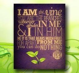 I am the Vine 1