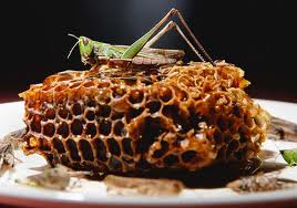 Locusts & Honey